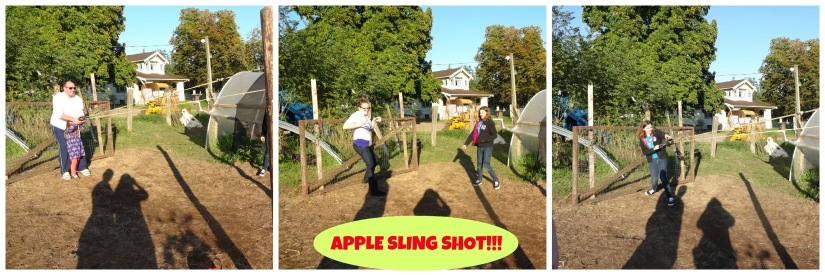 apple sling shot